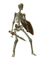Skelett Krieger