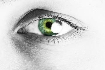 Close-up  female eye