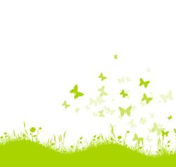 Grüne Blumenwiese mit Schmetterlingen