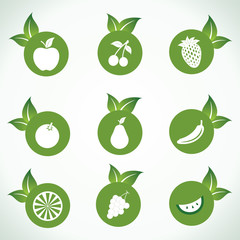 Different  fruit icons and design with green leaf