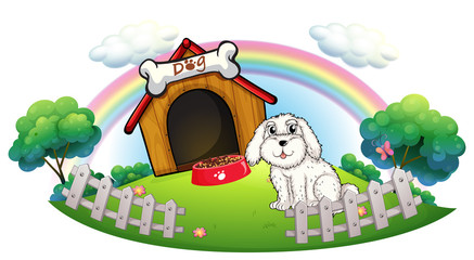 Foto auf Leinwand Hunde A dog in a dog house with fence