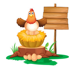 A hen hatching eggs with a wooden signboard