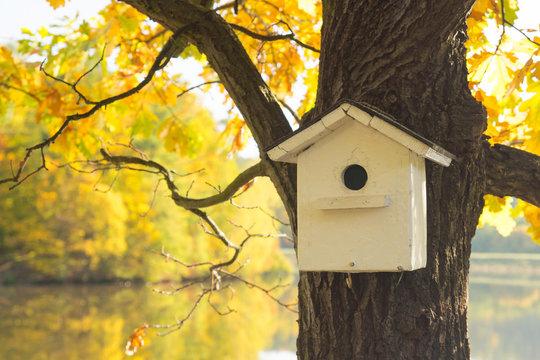 Vogelhaus, Vogelnest, Nistkasten, Herbst, Laubfärbung