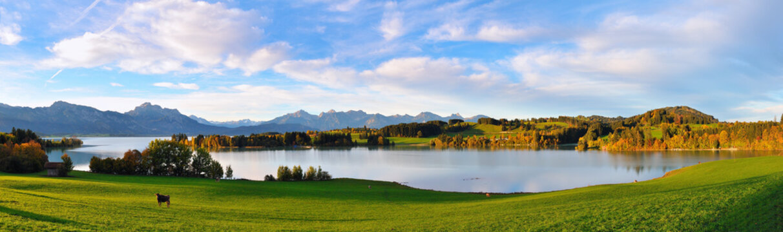 Panorama Allgäu Forgensee