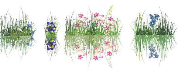 collection of flowers in grass isolated on white
