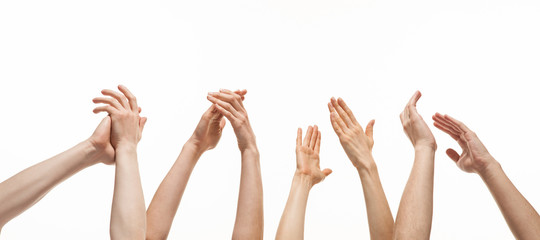 Group of hands applauding