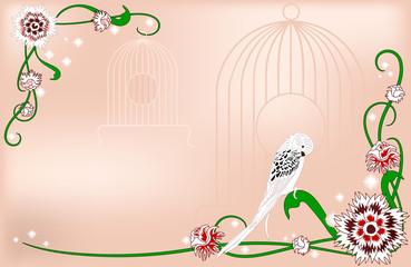 Printed roller blinds Birds in cages Карточка с декоративными цветами и волнистым попугаем.
