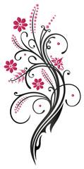 Ranke, Sommer, Blumen, Blüten, Gräser, pink, rosa