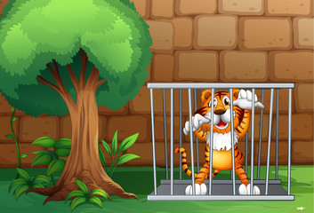A tiger in a cage made of steel