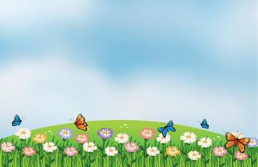 Keuken foto achterwand Vlinders Butterflies in the garden at the top of the hills