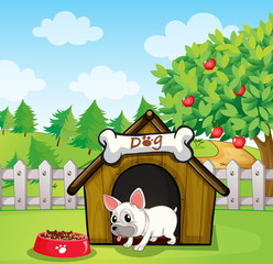 Poster Dogs A bulldog outside its dog house with a dog food