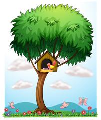 Keuken foto achterwand Vlinders A bird in a tree with a bird house