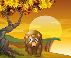 Wall Murals Bears A brown bear beside a big tree near the cliff