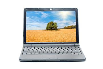 Rural landscape on screen of notebook