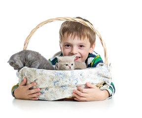 kid boy with kittens isolated on white background
