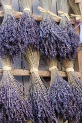 Spoed Foto op Canvas Lavendel couleur provence