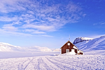 Refuge in the Arctic