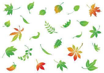 set of vector leaves