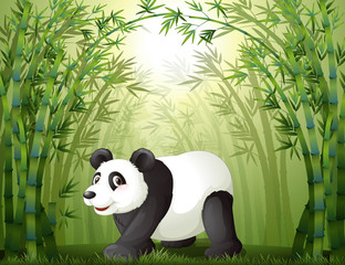 Bamboo trees with a panda at the center
