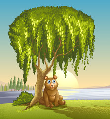 Wall Murals Bears A bear under a big tree