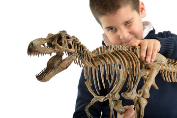 Examining Dino