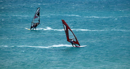windsurfeurs