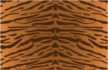 disegno tigrato