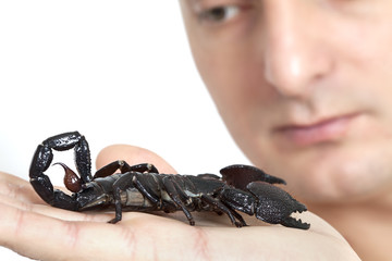 Young Caucasian man with scorpion