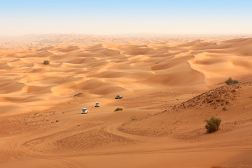 Desert safari near Dubai. UAE