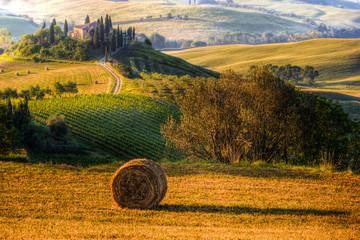 Wall Mural - Toscana, podere e paesaggio