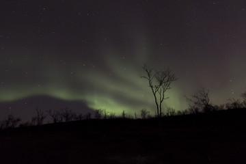 Aurora Borealis bursting across the sky at mountain top