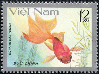 stamp printed by Viet Nam, shows Goldfish