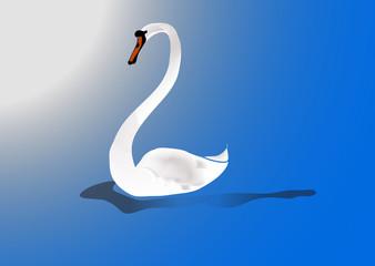 Swan white.