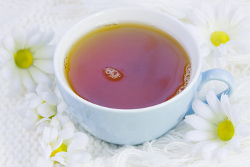 cup with hot tea and flowers of camomile