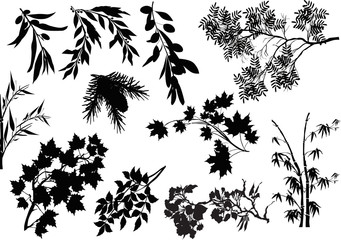 black tree branches collection