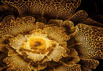 Wall Mural - Golden flower