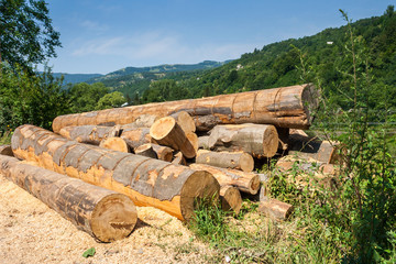 lumber in mountains