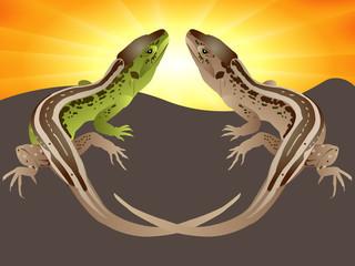 Couple of lizards