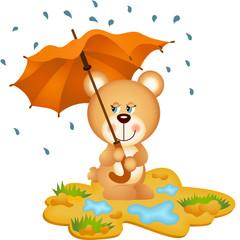 Teddy Bear Under Umbrella