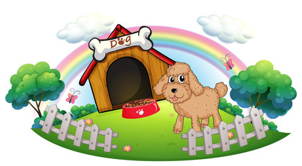 A puppy near a wooden doghouse with bone