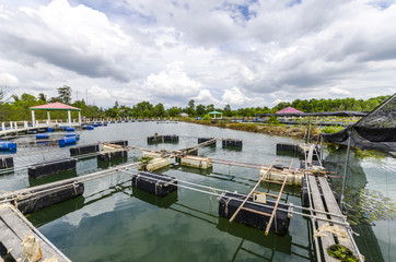 Fish farm in the province of Krabi. Thailand