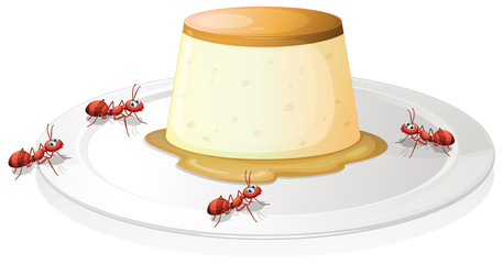 A leche flan in a plate with four ants