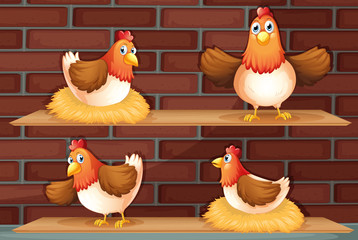 Four different positions of a chicken