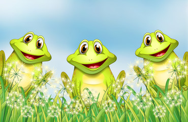 Three frogs in the garden