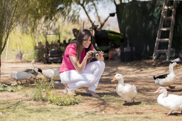 Beautiful young woman taking a few pictures of ducks at a farm