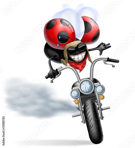 Wall mural coccinella biker