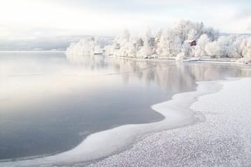 Garden Poster Scandinavia Winter am Fjord