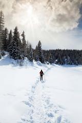trekking con racchette da neve