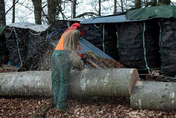 Waldarbeiter Kettensäge Baumstamm