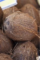fresh coconuts at local market